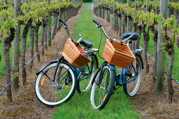 affordable niagara on the lake cycling wine tours